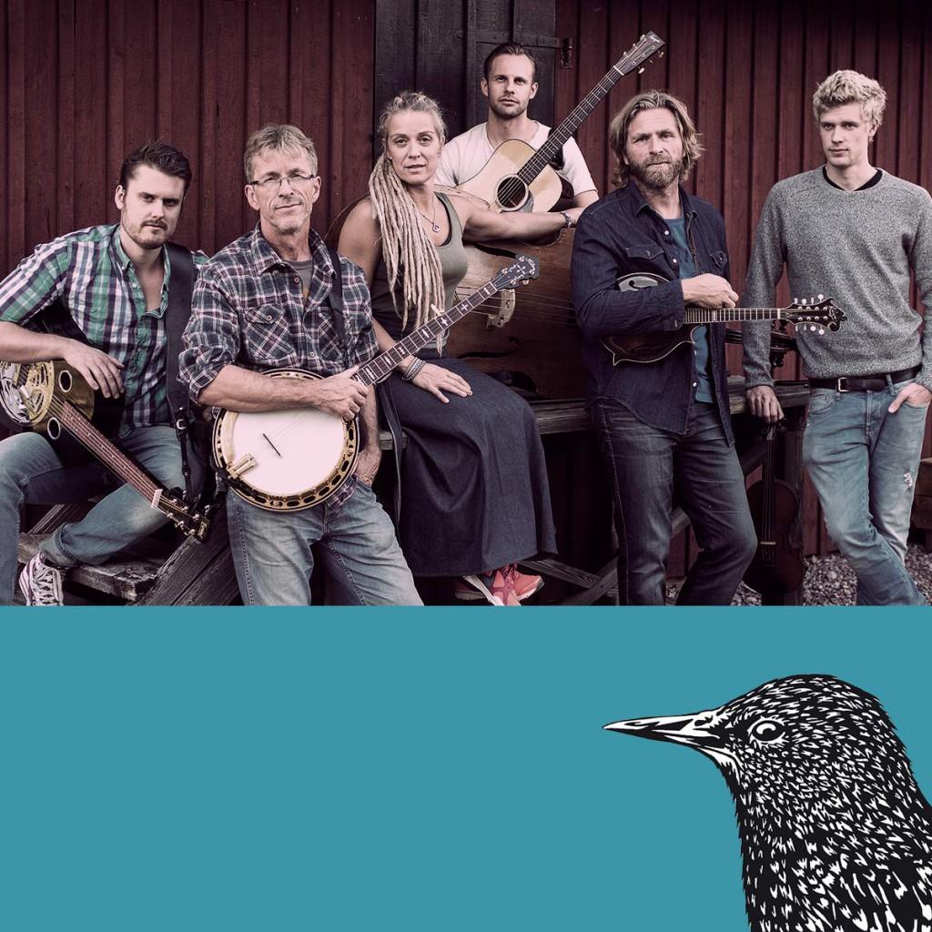 Hemsida Downhill Bluegrass Band